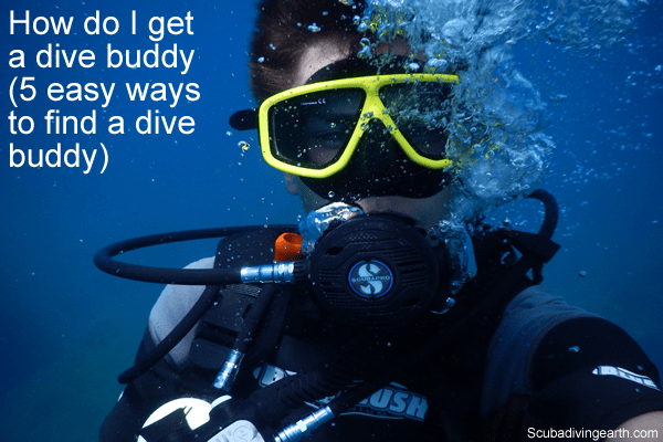 How do I get a dive buddy? (5 easy ways to find a dive buddy)