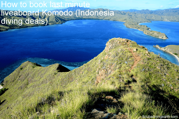 How to book last minute liveaboard Komodo (Indonesia diving deals)