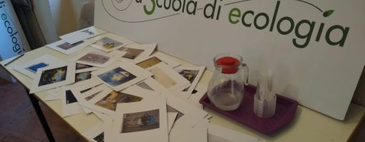 Le immagini disposte durante il laboratorio di Isabel De Maurissens
