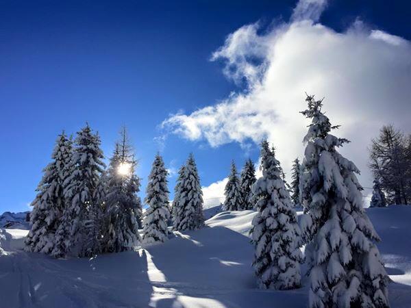 Лыжная школа итальянской лыжи школа Валь Рендена Пинцоло