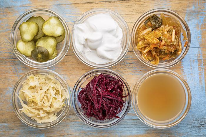 the benefits of probiotics