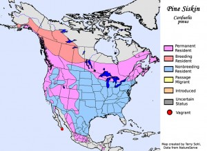 Pine Siskin - North American Range Map