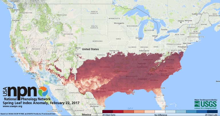 National Phenology Network - Spring Leaf Index Anomaly