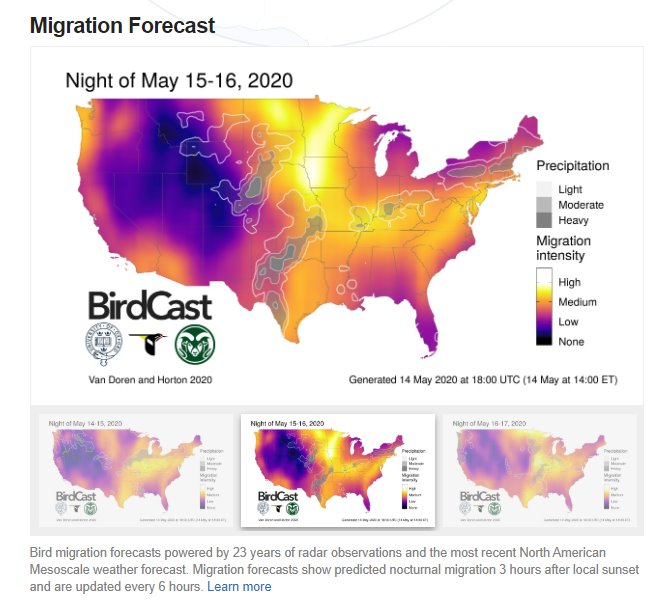 Cornell BirdCast - Migration Forecast for May 15-16.