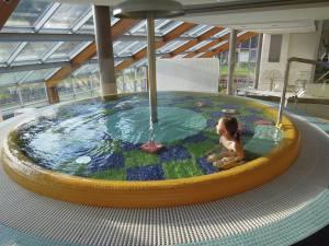 Hotel Horal dětský bazének