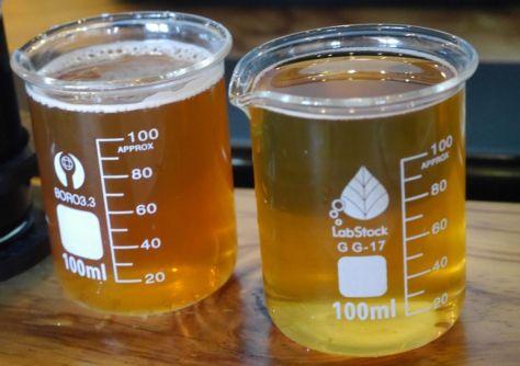 Arizona Beer 31