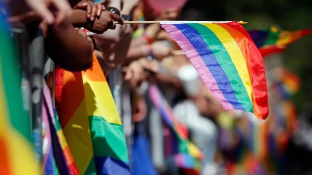 Image result for pride puerto vallarta