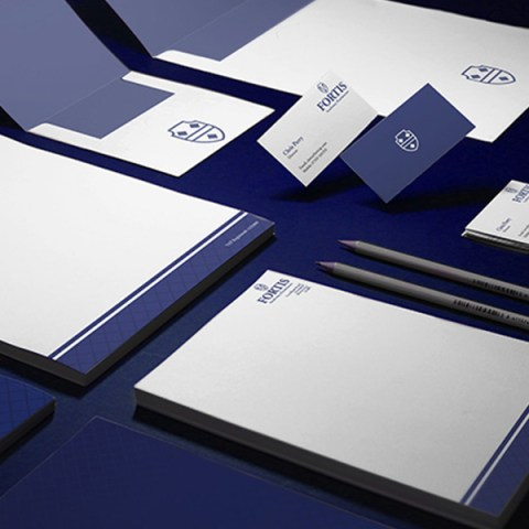 Fortis Insolvency Branding