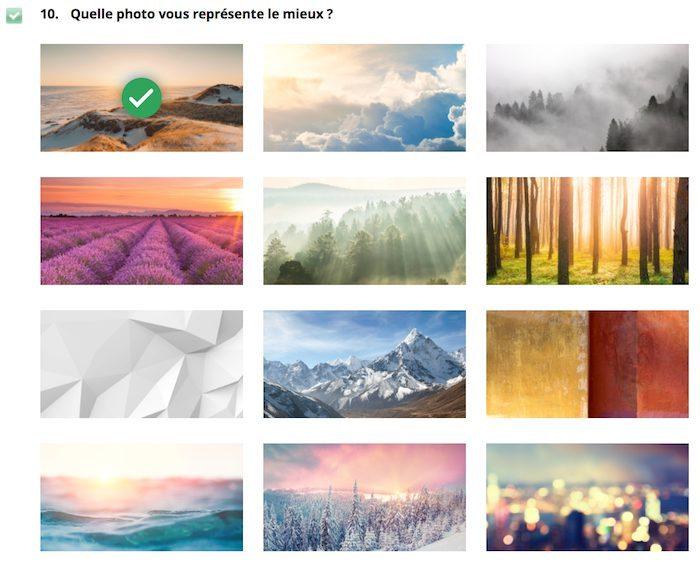 Question impliquant de se comparer à différentes images.