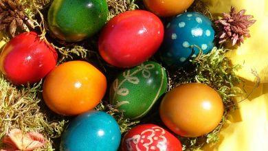 صورة عيد الربيع ذكريات من زمن فات