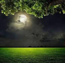 صورة أنت والقمر