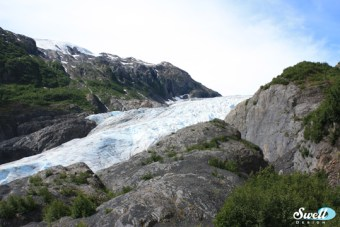 Exit Glacier- the only glacier located in Kenai Fjords National Park that you can walk to. Viewing others requires a boat or plane.