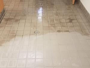 sea breeze tucson floor care