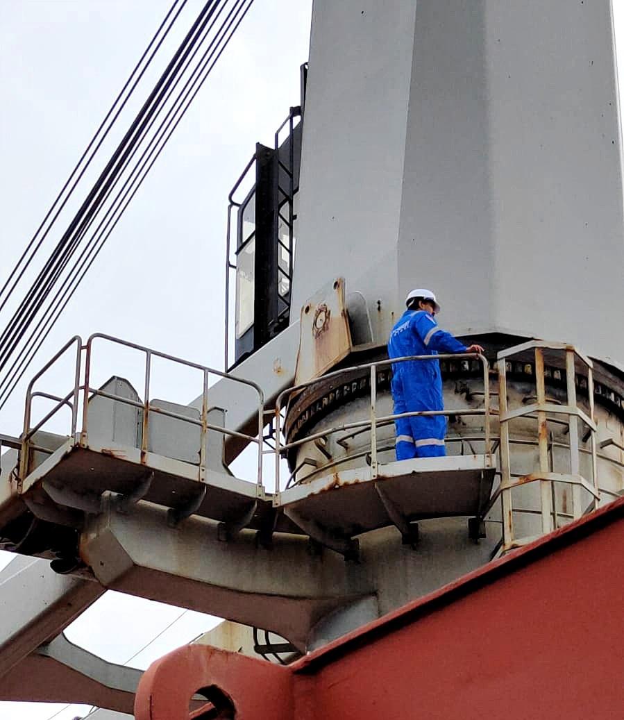 sea forrest repair team