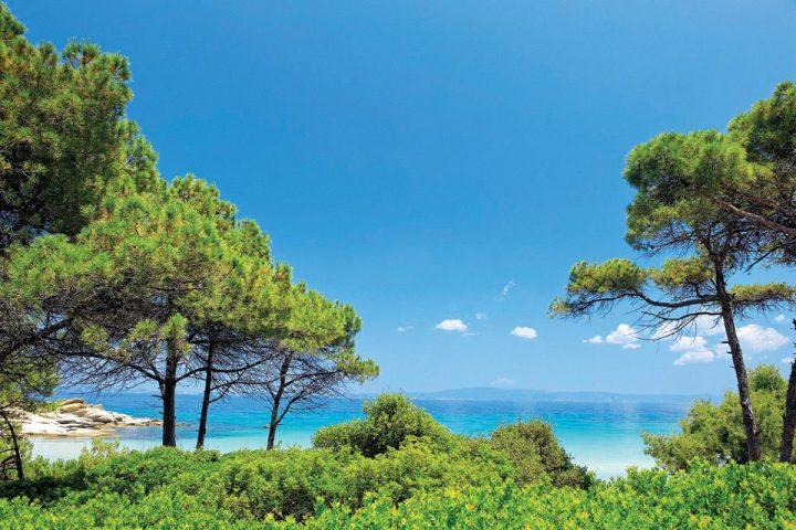 Karidi beach @ Vourvourou