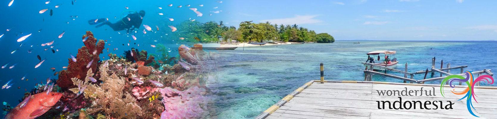 Indonesia underwater photography
