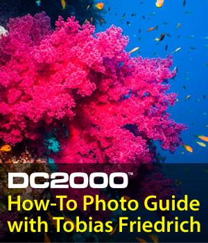 SeaLife Underwater Photography Guide DC2000 Tobias Friedrich