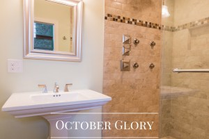 Bathrooms Gallery Bathroom Remodel October Glory by Sea Light Design-Build