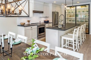 Kitchen Remodel Wellington Parkway by Sea Light Design-Build