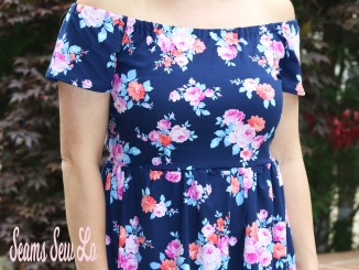 True Beauty Dress Sewing Pattern by Ellie and Mac