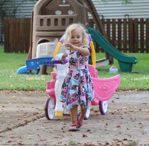 Saving her Princess Horse Carriage