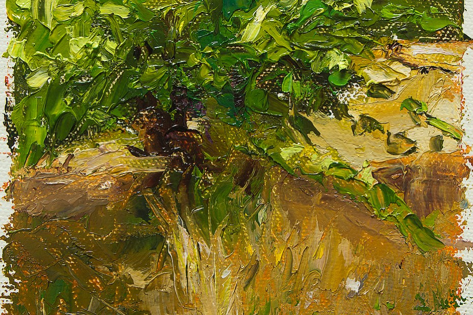 Sonoma Vineyard Study Painting Seamus Berkeley