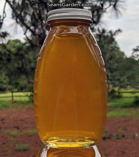 1 lb honey