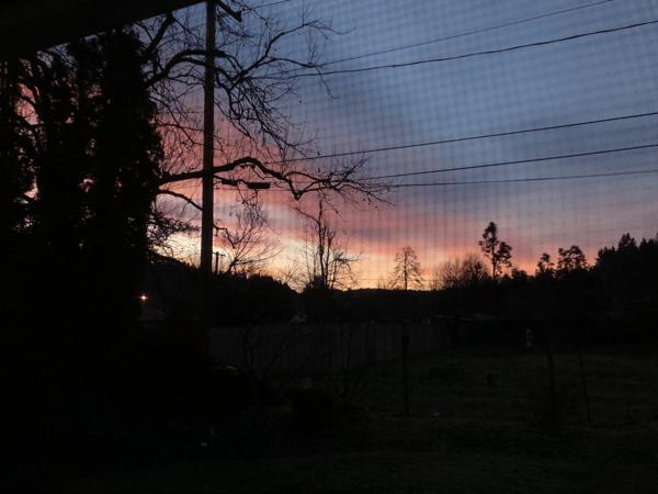 Sunrise_01.20.21