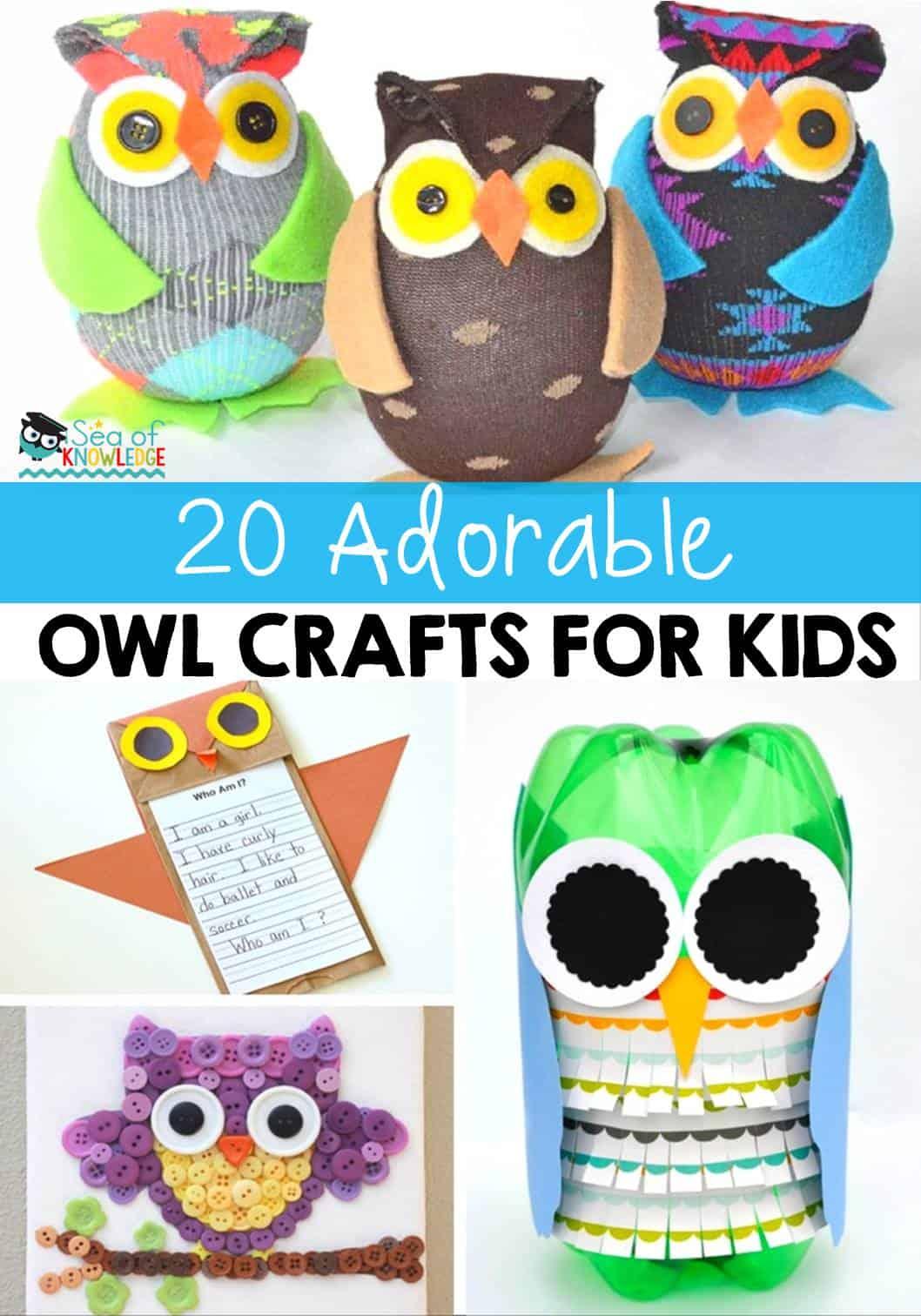 20 Adorable Owl Crafts For Kids