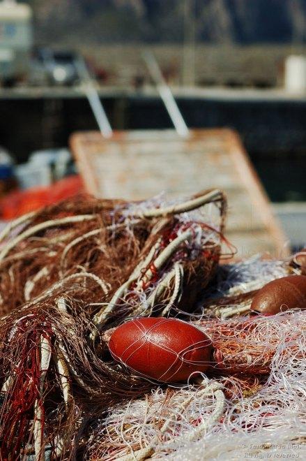 Reti da pesca ad asciugare