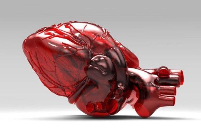 Cientistas dos EUA anunciam avanço em impressão 3D de partes do coração