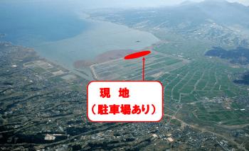 諫早湾干拓地のクリムソンクローバーを見に行こう!!