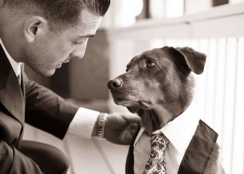 This Wedding Photo of a Canine Best Man Captures Just How Deep a Dog's Love Truly Is