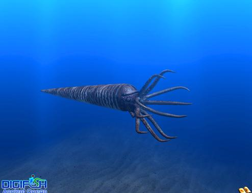 https://i1.wp.com/www.searchamateur.com/pictures/digifish-ancient-ocean-orthocone.jpg