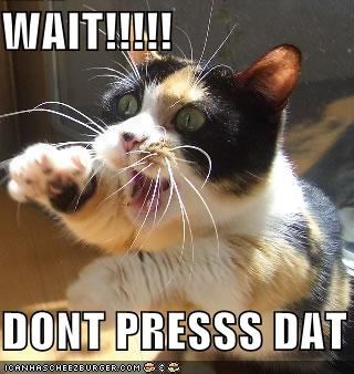 funny-pictures-cat-asks-you-to-not-press-that