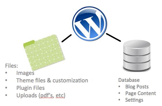 WordPress Files | Database