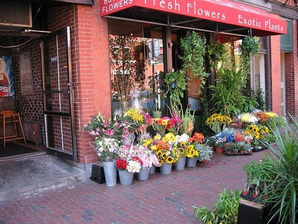 boston-flowershop