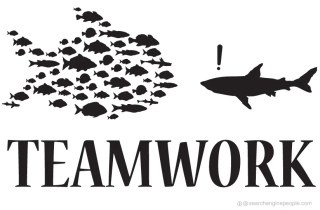 SEP_Teamwork_white