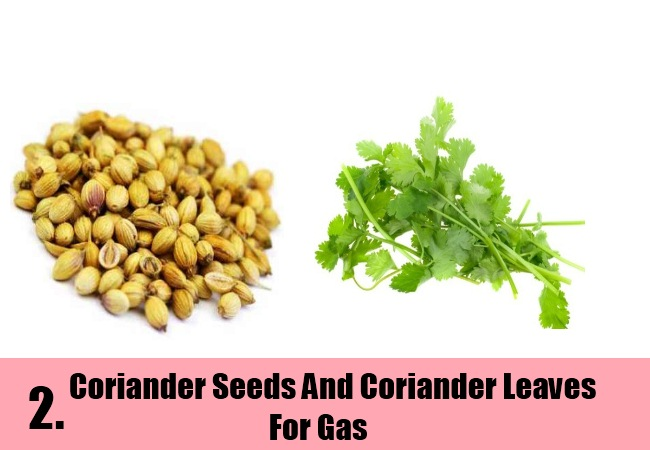 Coriander Seeds And Coriander Leaves