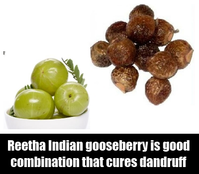 Reetha And Indian gooseberry