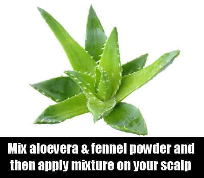 aloevera gel and fennel powder