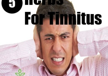 5 Herbs For Tinnitus