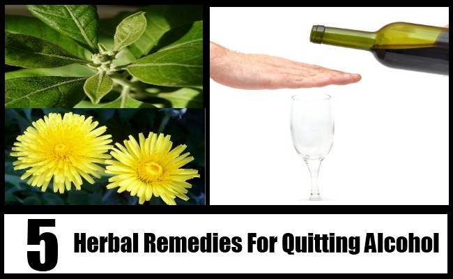 Quitting Alcohol