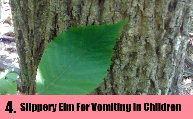 how to stop vomiting in children home remedy