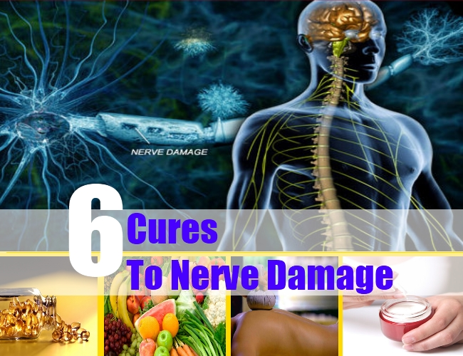 6 Natural Cures For Nerve Damage How To Cures Nerve