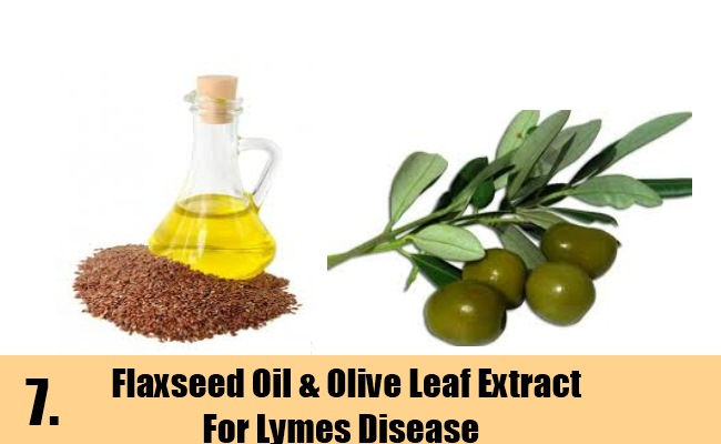 Flaxseed Oil & Olive Leaf Extract