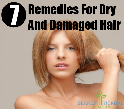 dry and damaged hair
