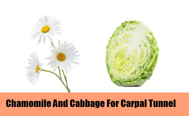 Chamomile And Cabbage