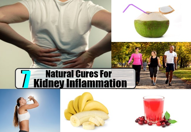 Kidney Inflammation
