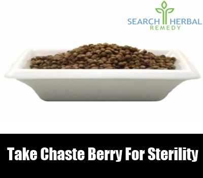 chaste berry